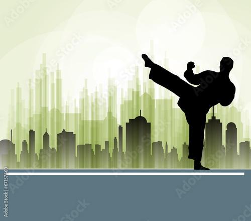 Fototapety, obrazy: Karate