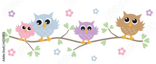 colorful owls header banner