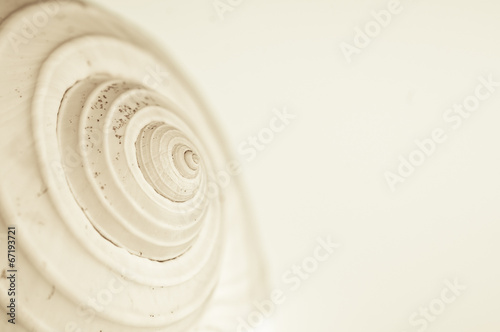 abstract snail spiral