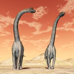 Fototapeta Dinosaur Brachiosaurus