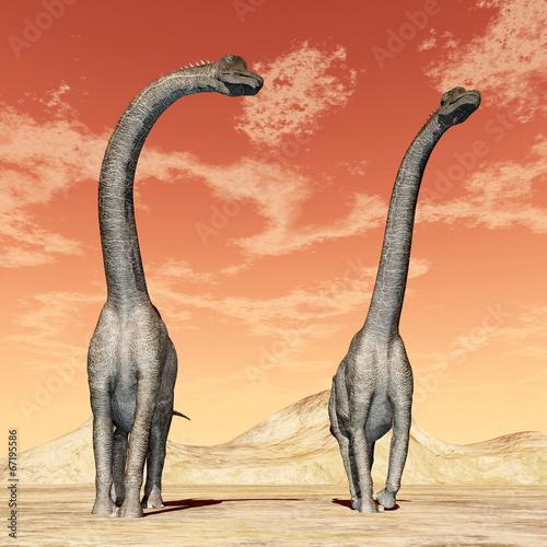 Dinosaur Brachiosaurus - 67195586