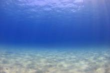 Underwater Background - Sunlig...
