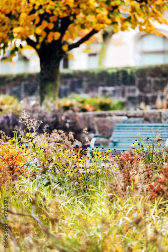Fotobehang Zwavel geel autumn in the city