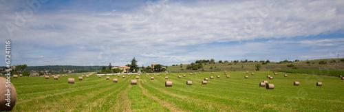 Spoed Foto op Canvas Blauwe hemel Summer rural landscape with a field and haystacks
