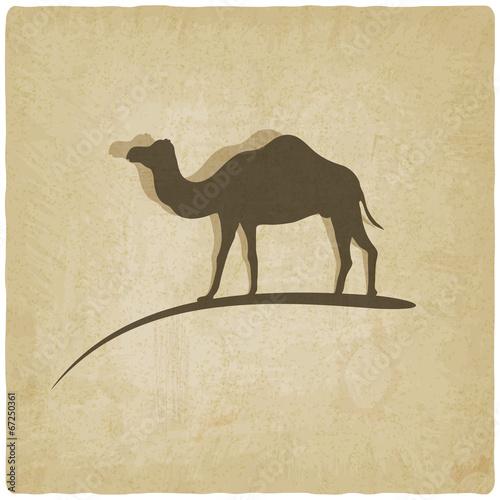 wielblad-na-bezowym-tle