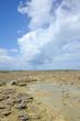 Oléron, plage de Domino à marée basse