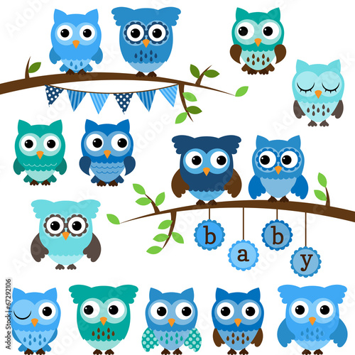 Poster Uilen cartoon Vector Collection of Boy Baby Shower Themed Owls and Branches