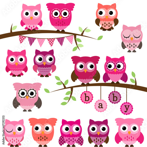 Deurstickers Uilen cartoon Vector Collection of Girl Baby Shower Themed Owls and Branches