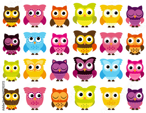 Canvas Prints Creatures Vector Collection of Cute Owls