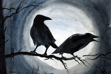 Two Black Crows On A Branch