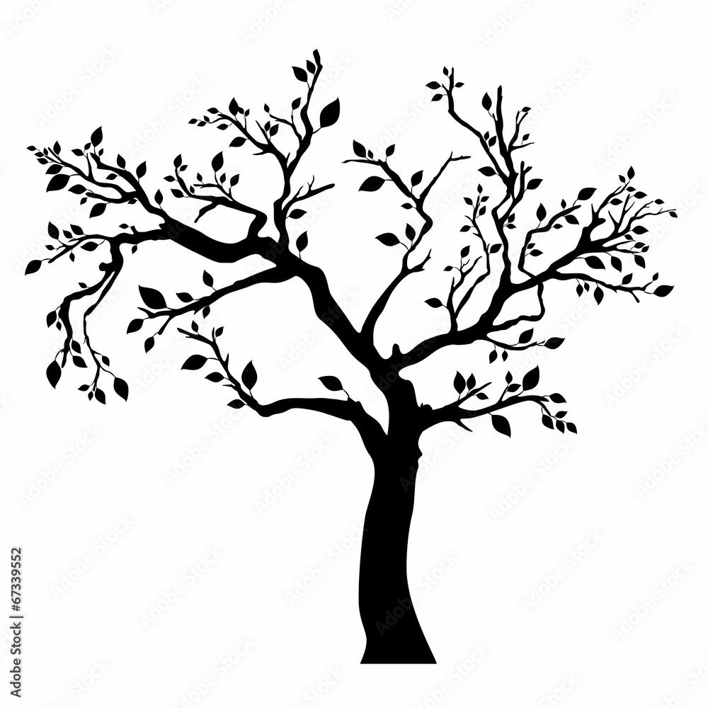 Drzewna sylwetka z liśćmi na białym tle.