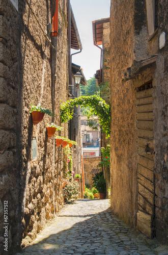 Foto op Plexiglas Venetie Traditional Italian homes