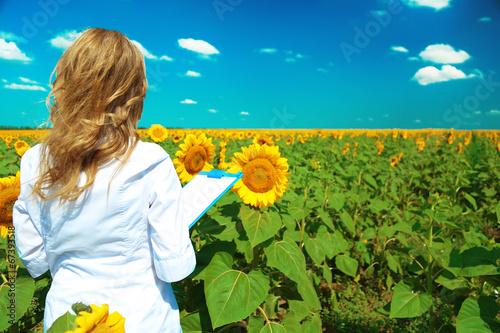 Fotografía  Agronomist with folder in sunflowers field