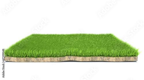 3d grass on white background © Nikita Kuzmenkov