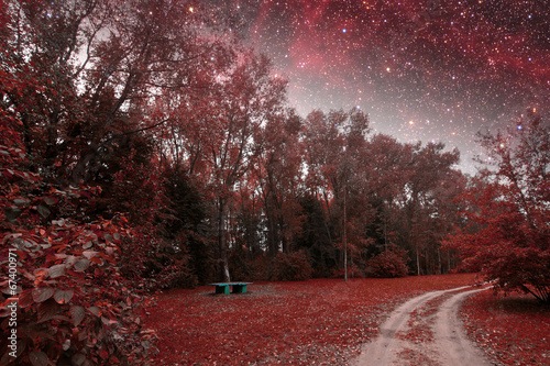 spring night infrared photography. Elements of this image furnis