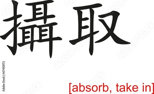 Fotografia, Obraz  Chinese Sign for absorb, take in