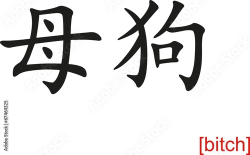 Chinese Sign for bitch Canvas-taulu