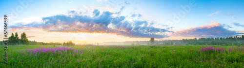 summer  landscape with sunrise - 67466539