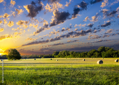 Deurstickers Texas Hay Bales at Sunrise
