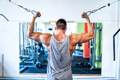 Bodybuilder working out the biceps in the gym. Sports concept Wallpaper Mural