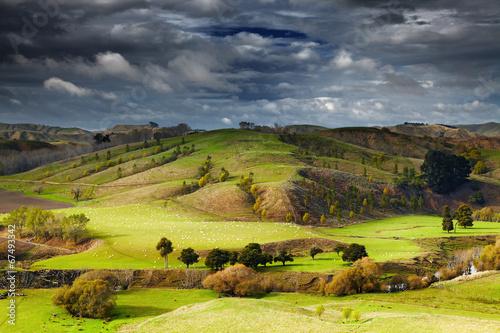 Poster Nouvelle Zélande New Zealand landscape, North Island