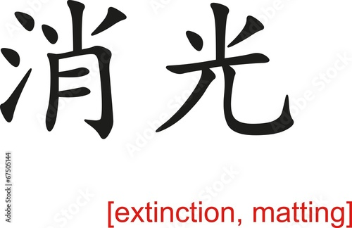 Fotografie, Obraz  Chinese Sign for extinction, matting
