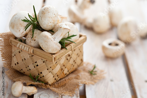 Photo  Champignons in basket.