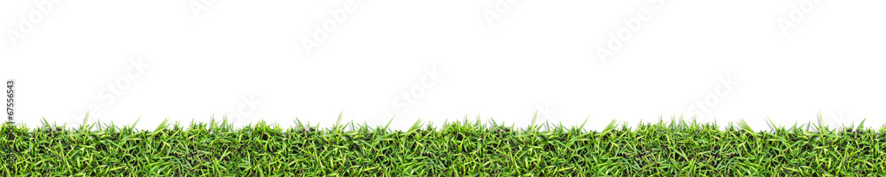 Fototapety, obrazy: Seamless grass background  isolated on white