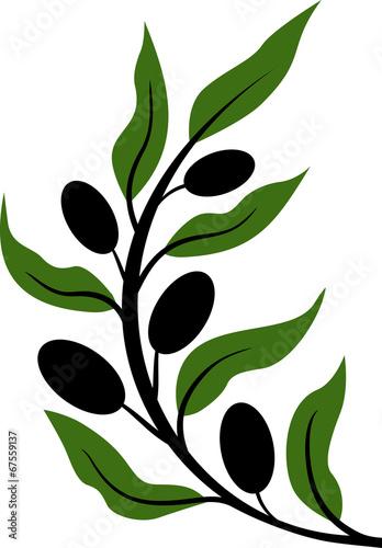 czarne-oliwki