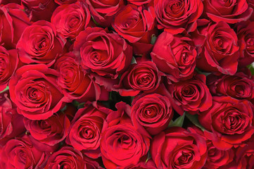Colorful flower bouquet from red roses for use as background.