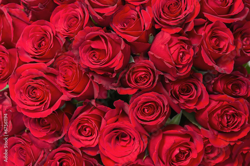 Colorful flower bouquet from red roses for use as background. Canvas Print