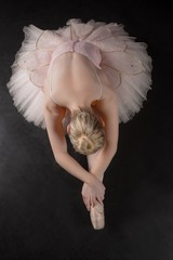 FototapetaGraceful ballerina bending forward in pink tutu