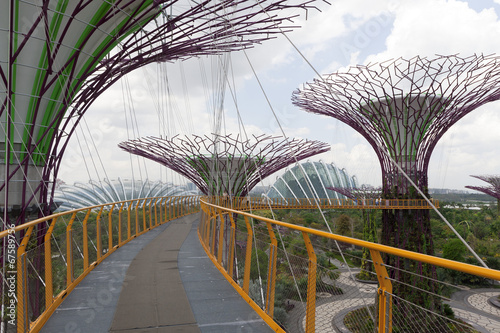 Photo  Supertrees Grove in Gardens by the Bay, Singapore
