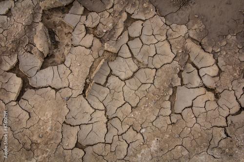 Fotografía  Cracked soil texture background