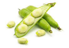 Broad Bean Pods And Seeds