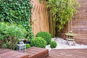 Fototapeta Japanese garden with bamboos and stone lantern