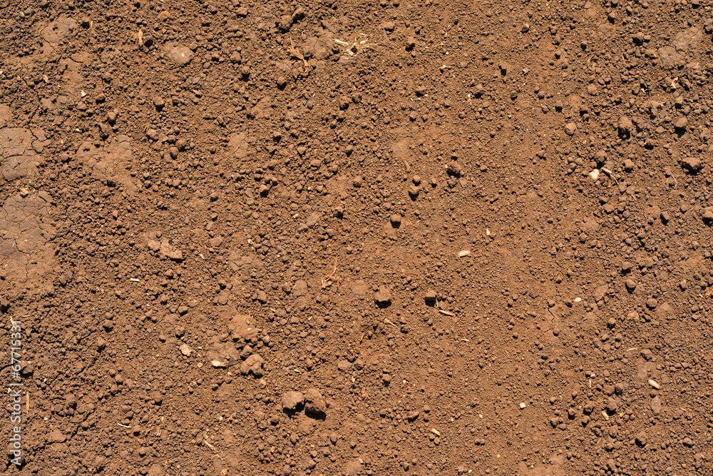 Fototapeta Brown ground surface
