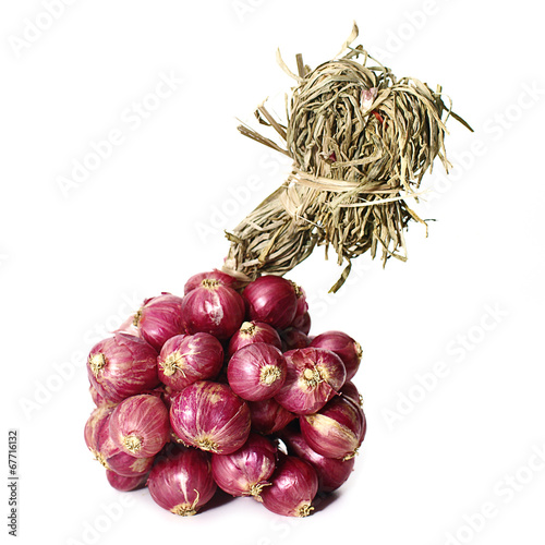фотография  Shallots isolated