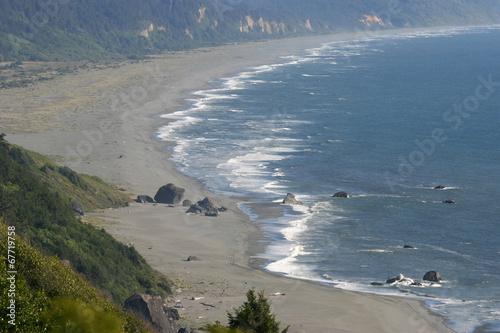 Wild Shoreline of the Pacific Northwest Poster