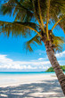 Beautiful tropical beach with white sand and blue waters