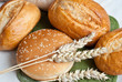 Freshly baked traditional rolls with ears of wheat grain