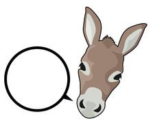 Talk Donkey