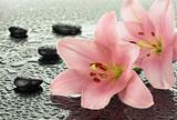 Fototapeta Kamienie - Lilie z kamieniami bazaltowymi