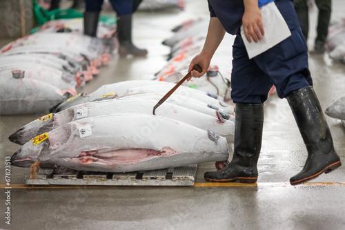 Tsukiji Fischmarkt in Tokyo Tapéta, Fotótapéta