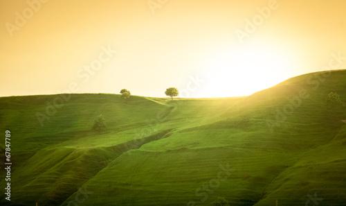 Fotografia landscape of green hills at sunrise
