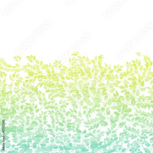 Foto  Botanische Muster Textur Abstufung