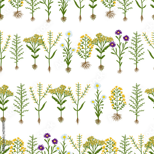 Fotobehang Draw Herbarium flowers with roots, seamless pattern
