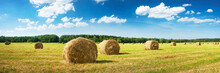 Hay Bales With Blue Sky And Fl...