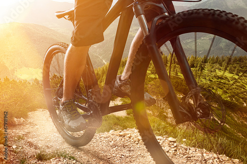 Fotomural Mountain Bike