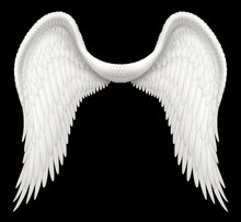 Angel Wings Isolated Against Black Background